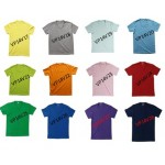 3.เสื้อยืด คอวีสี